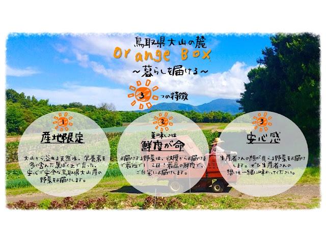 http://sasakimasashi19880.wixsite.com/mninetourismprogram/orange-box-1