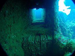 the-maori-underwater