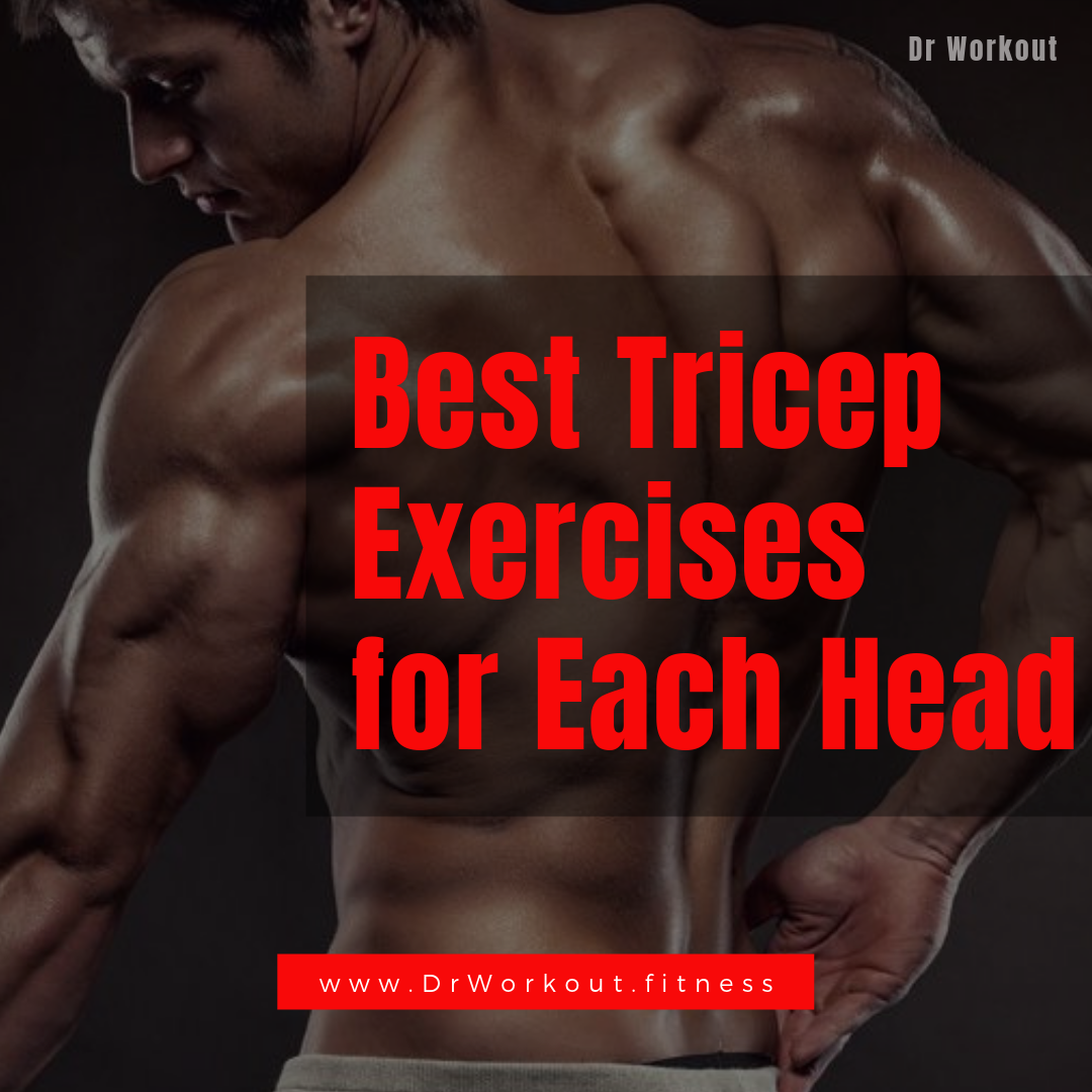 Best Triceps Exercises For All 3 Heads