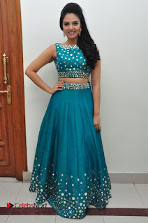 Sree Mukhi Pictures at Gentleman Audio Launch  0132