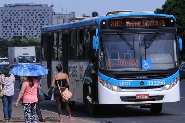 Resultado de imagem para transporte em samambaia