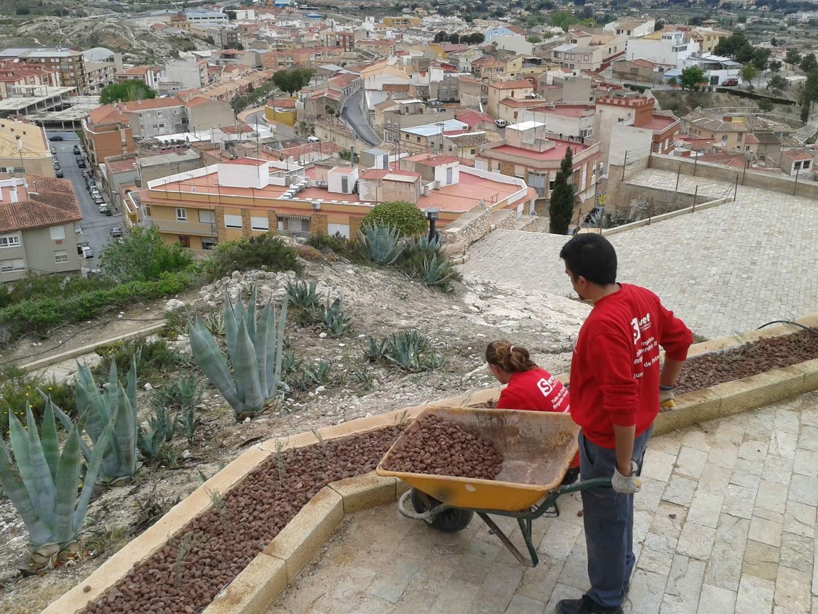 Museo d maso navarro labores de jardiner a en el entorno for Jardineria navarro