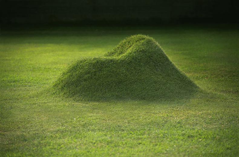TERRA! El Sillón de hierbas