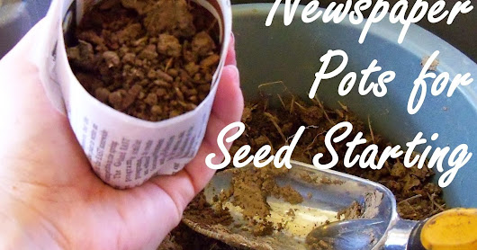 Making Simple Newspaper Pots for Seed Starting