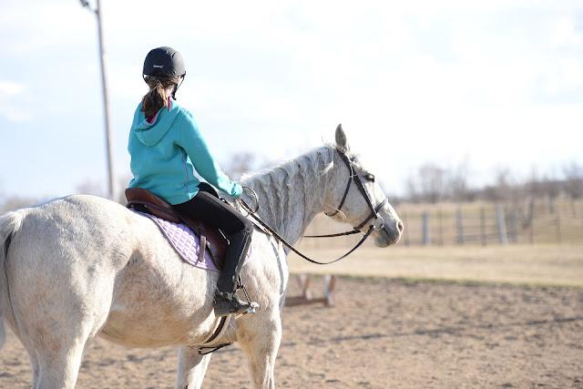 écurie de rêve bien être cheval