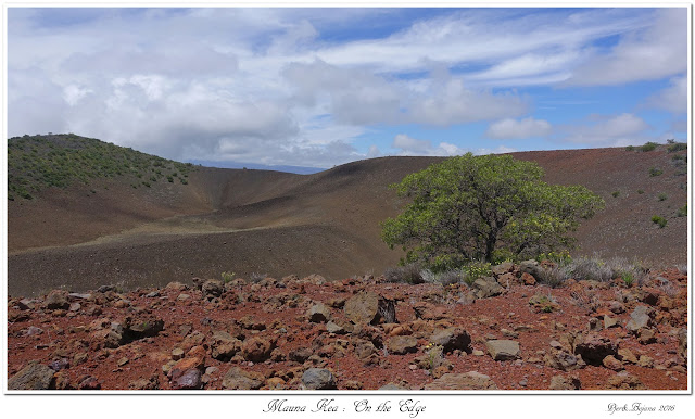 Mauna Kea: On the Edge