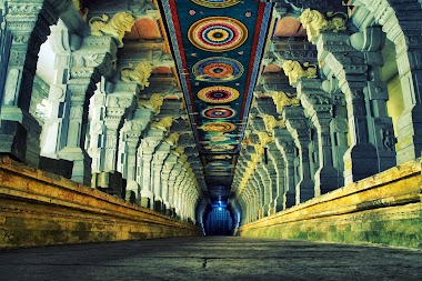 The Train to Rameswaram in Tamil Nadu