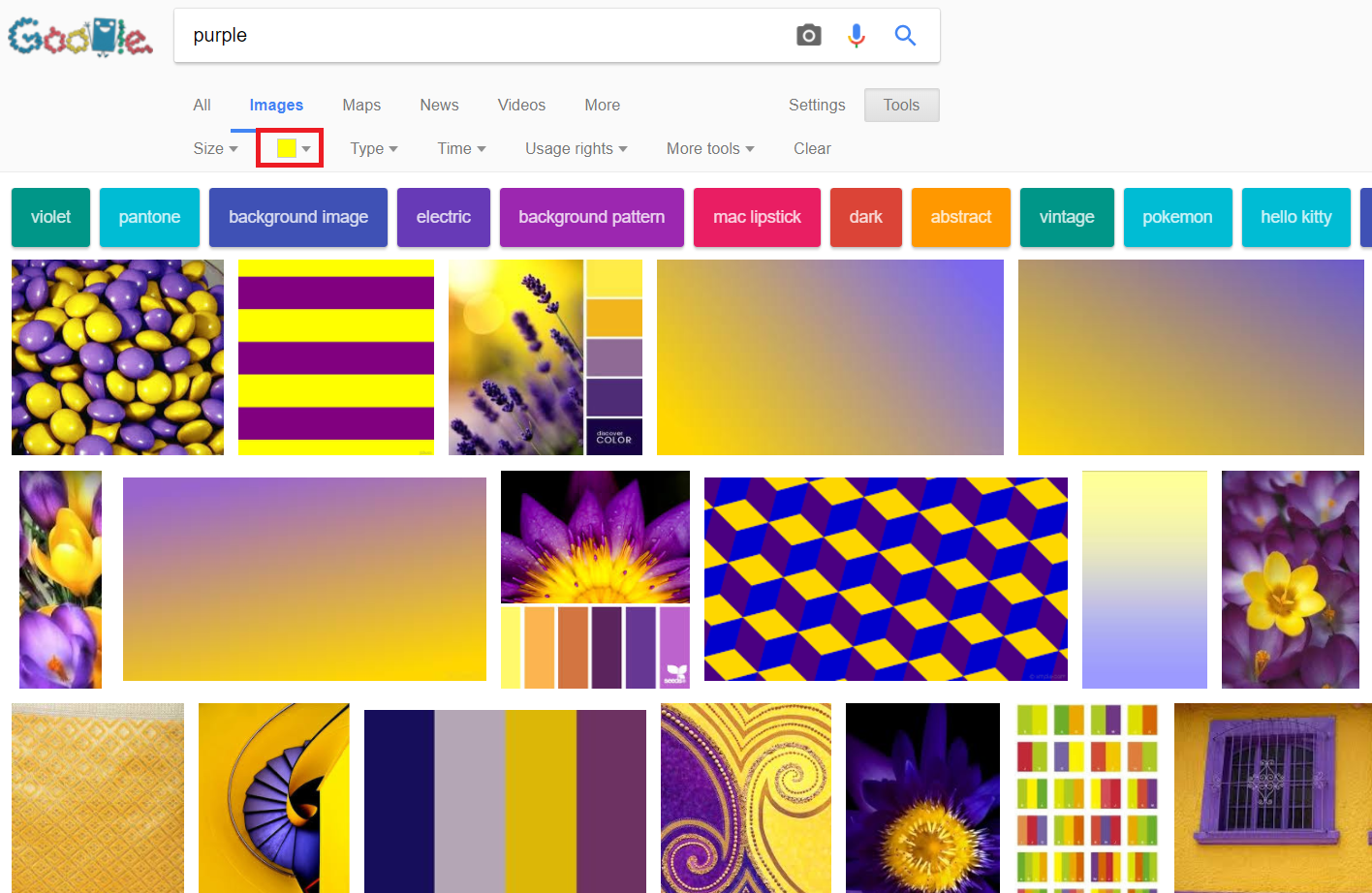 purple with a prominent use of yellow