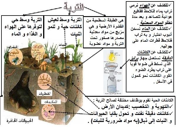 ملخص درس التربة السادس ابتدائي بحلة جديدة