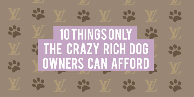10 Pet Products Only the Crazy Rich Dog Owners Can Afford (That We Wish We Could)