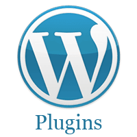 What is: Plugin