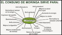 http://steviaven.blogspot.com/2016/05/moringa-propiedades-beneficios.html