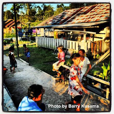 Taman Nasional Tanjung Puting Konservasi OrangUtan Terbesar di Dunia