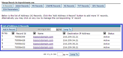 All A Records In DNS Management Page