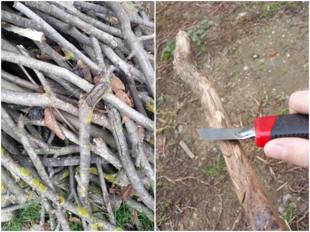 Skidanje kore grani - adventski vijenac