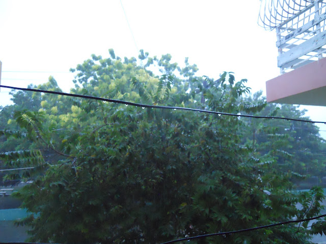 Suspenden docencia en Pedernales por lluvias
