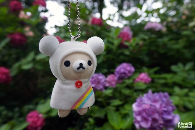 筥崎宮の紫陽花園