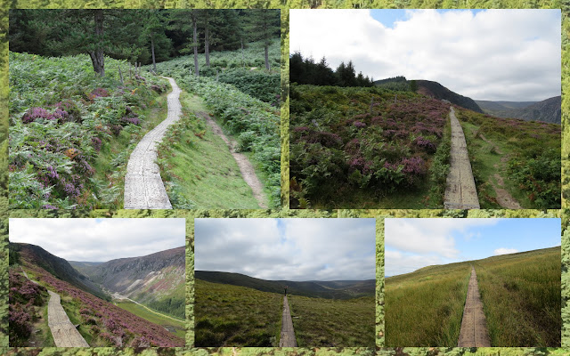 Hillwalking at Glendalough in County Wicklow - Boardwalk along the ridge