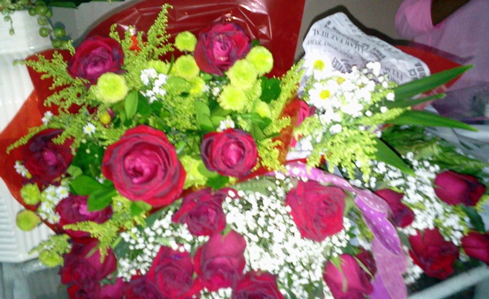 Flores Para Bens Sobrinha: Piauí Terra Querida!: Parabéns