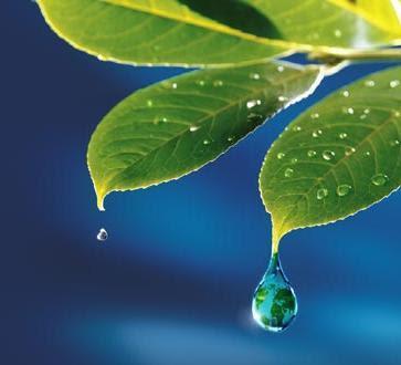 Resultado de imagen de gota de lluvia