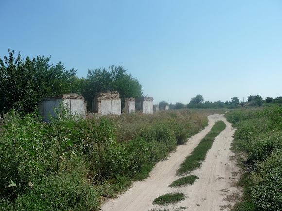 Васильківка. Околиця селища. Руїни будівель сільськогосподарського призначення