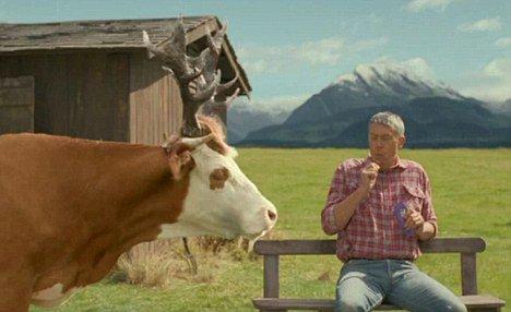 Casi 20 millones de estadounidenses creen que la leche con chocolate viene de las vacas cafés