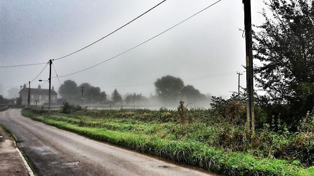 Project 366 2016 day 285 - Foggy mornng run // 76sunflowers