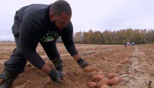 Cultiva la tierra para regalar cosecha a los pobres