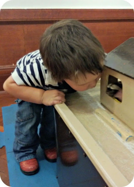 Small boy Playing with a Noah's Ark toy The Gallery