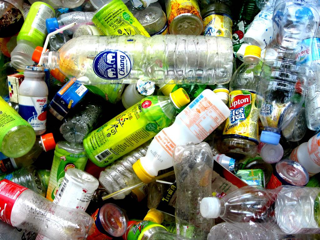 cientistas descobrem bactéria que decompõe 100% da garrafa pet