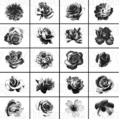 Now you can get it for free, 56 Brush Photoshop, consisting of 20 Realistic Flower Brushes, 16 Brush Outline Flowers and 20 Brush leaves. You are free to use it for personal use, to beautify the product with the design pattern that you will sell.