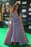 Parul Yadav in Stunning Purple Sleeveless Transparent Gown at IIFA Utsavam Awards 2017  Day 2  Exclusive 02.JPG