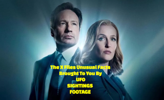 The Real life X Files.