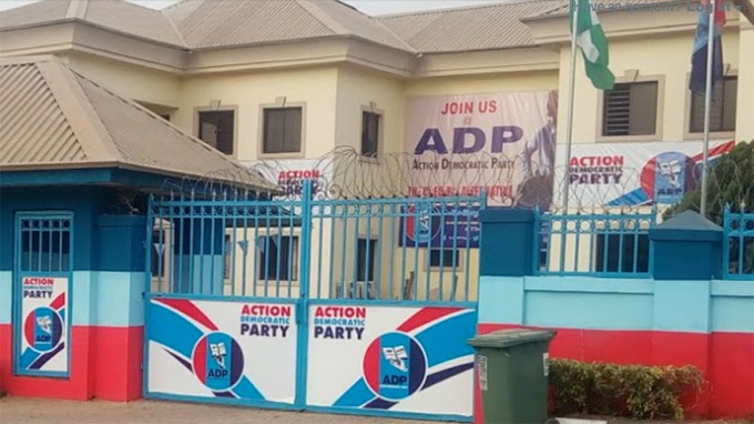 #Xenophobia: ADP Condemns Attack On Nigerians.