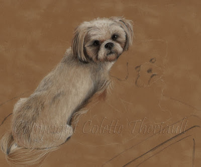 shih tzu pet portrait painting by Colette Theriault