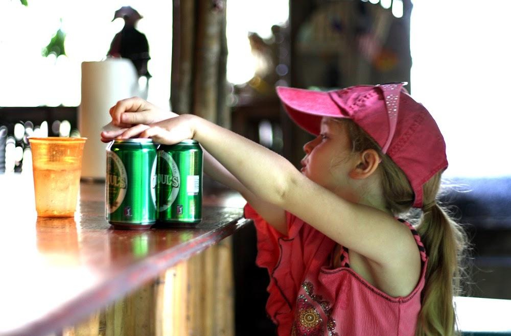 beer drinking pigs