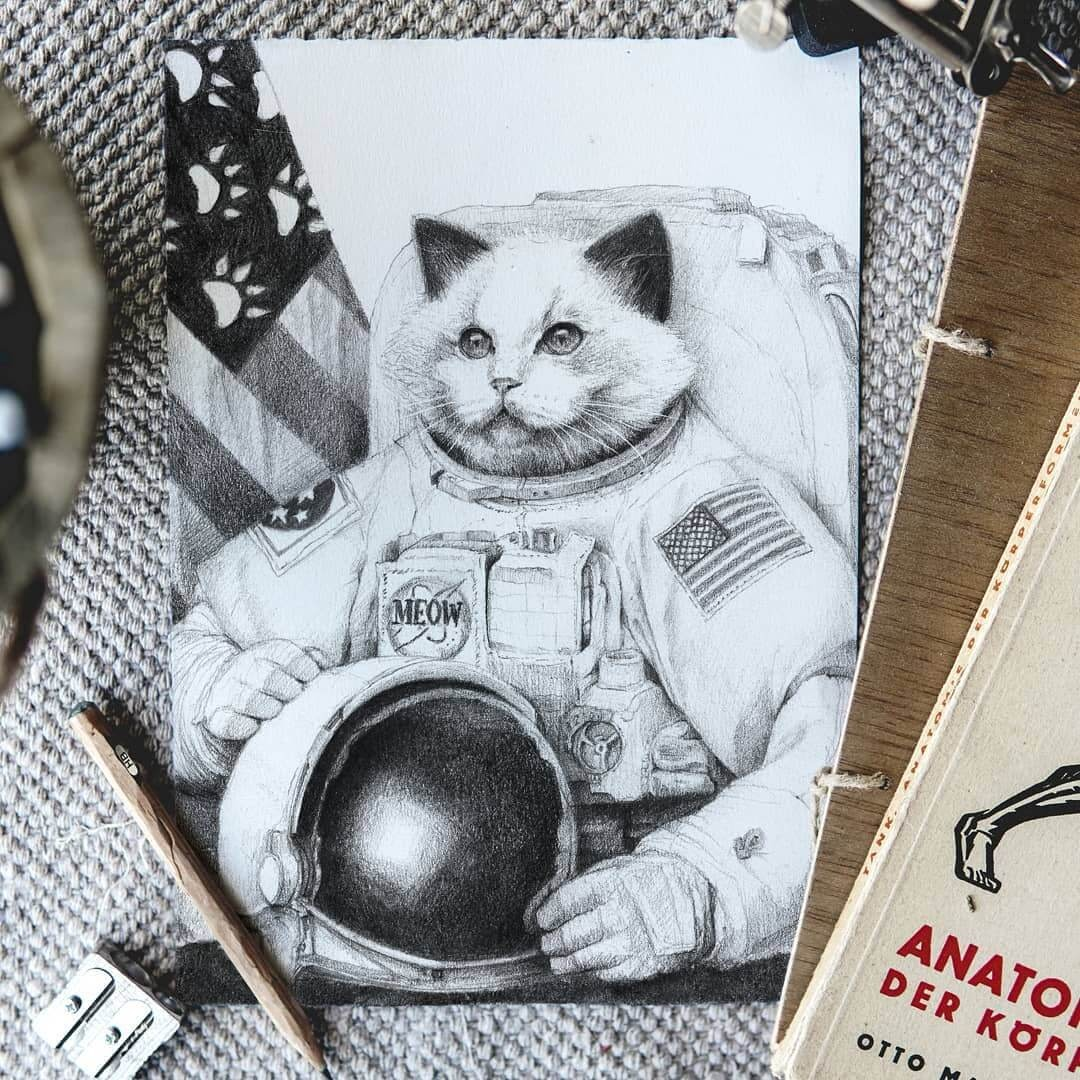 02-Cat-Astronaut-Mike-Koubou-Staging-Ink-and-Pencil-Drawings-www-designstack-co