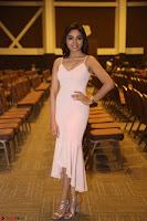 Aishwarya Devan in lovely Light Pink Sleeveless Gown 060.JPG