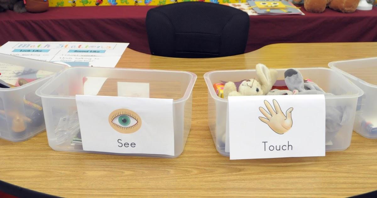 Exploring Science 5 Senses Investigation Box