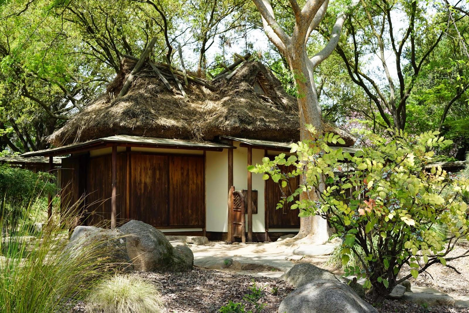 Mid Sierra Musings: Shinzen Friendship Garden Fresno