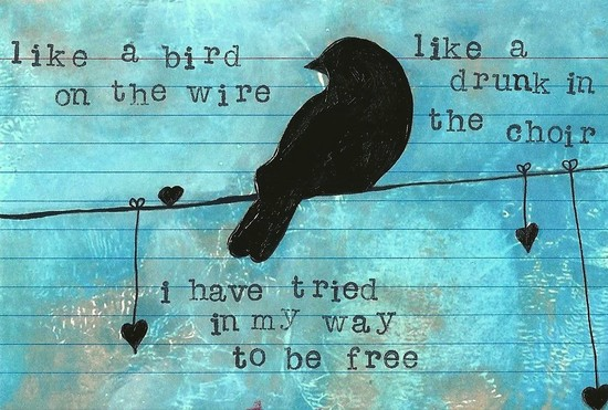 Whoopidooings: Carmen Wing: ICAD week 2 - Like a Bird on a Wire...