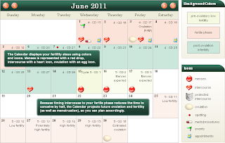 Image: Attain Fertility Planner - Reduce Your Time to Conceive by Half!