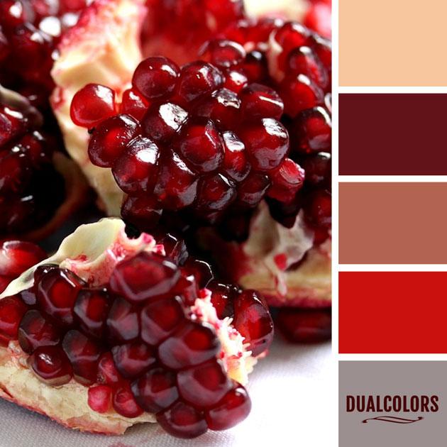 color_paleta_106