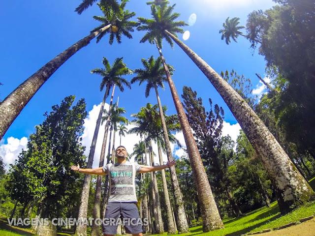 Rio 2016: Jardim Botânico - Principais Atrativos