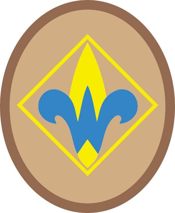 Cub Scout Pack Keller Tx Webelos 1 And Aol