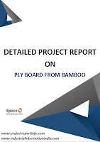 Ply Board from Bamboo Project Report