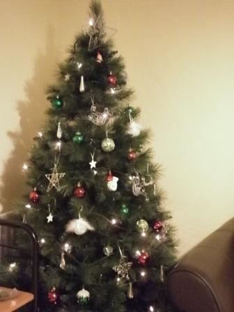 Christmas Decorations Publisher