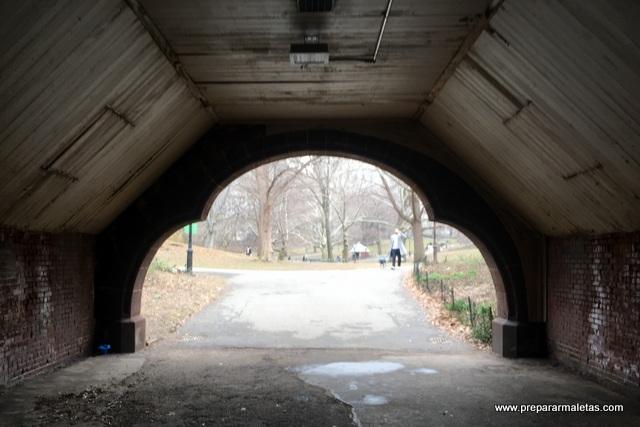 puentes en Central Park