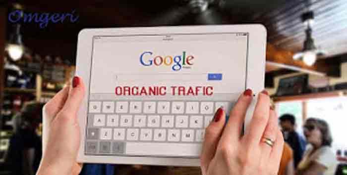 Arti Pentingnya Trafik Organik Pengunjung Google dan Cara Mengetahuinya