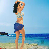 Bollywood Bikini ACTRESS in Bikini  Exclusive Galleries 040.jpg